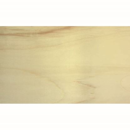 Immagine di Foglio pioppo, sezione, 4x830x600 mm