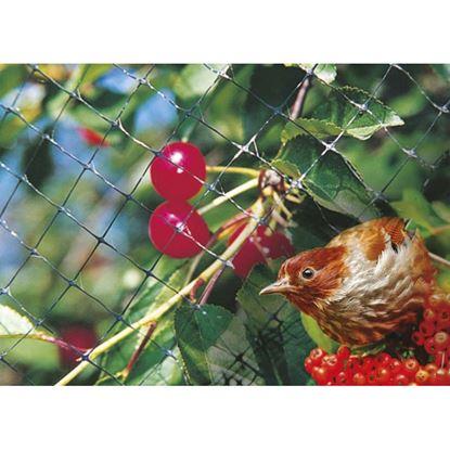 Immagine di Rete anti-uccelli, in polipropilene PPL, maglia 12x15 mm, 4x5 mt