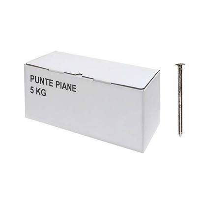 Immagine di Punte piane, 5 kg, 16x60 mm