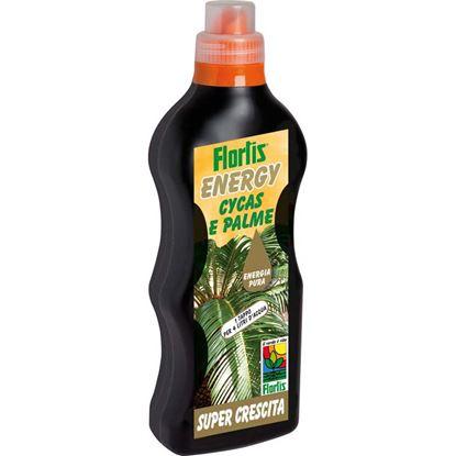 Immagine di Energy cycas,p.tropic.li 500 g