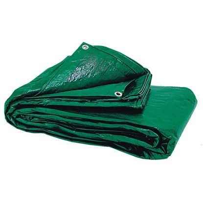 Immagine di Telo copritutto mt.2x3 gr.70mqc/occhielli verde